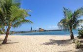 Investissement aux Antilles, un marché en pleine évolution